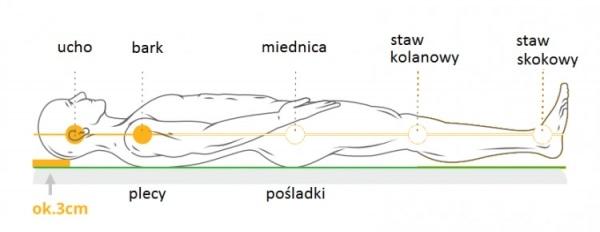 DR SAPPORO SHELL poduszka anatomiczna